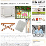 me&re design makes jan showers' five things to have right now!